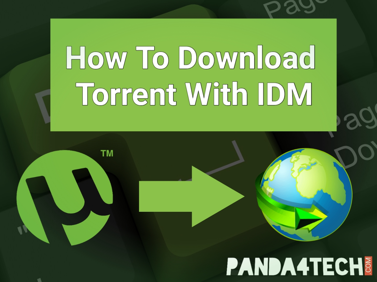 convert torrent to idm unlimited